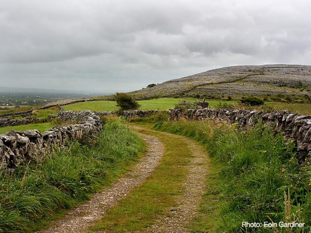 Irish countryside in The Burren, County Clare.