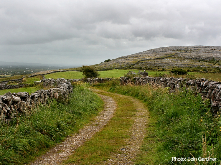 Irish countryside in The Burren, County Clare.
