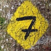 Seven things you need to know about content marketing